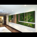 Let Plantscapers green up your space mosswallart architecture