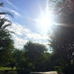 Beautiful day here in Palm Desert Have a fabulous Friday!palmtreeshellip