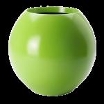 Bahia Bowl