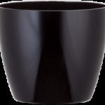 Phoenix Cylinder