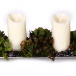Succulents with Candles in Silver Tray
