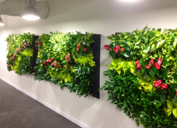 Houzz Living Wall