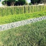 Great architecture in Irvine houzz equisteum landscapingdesign irvine