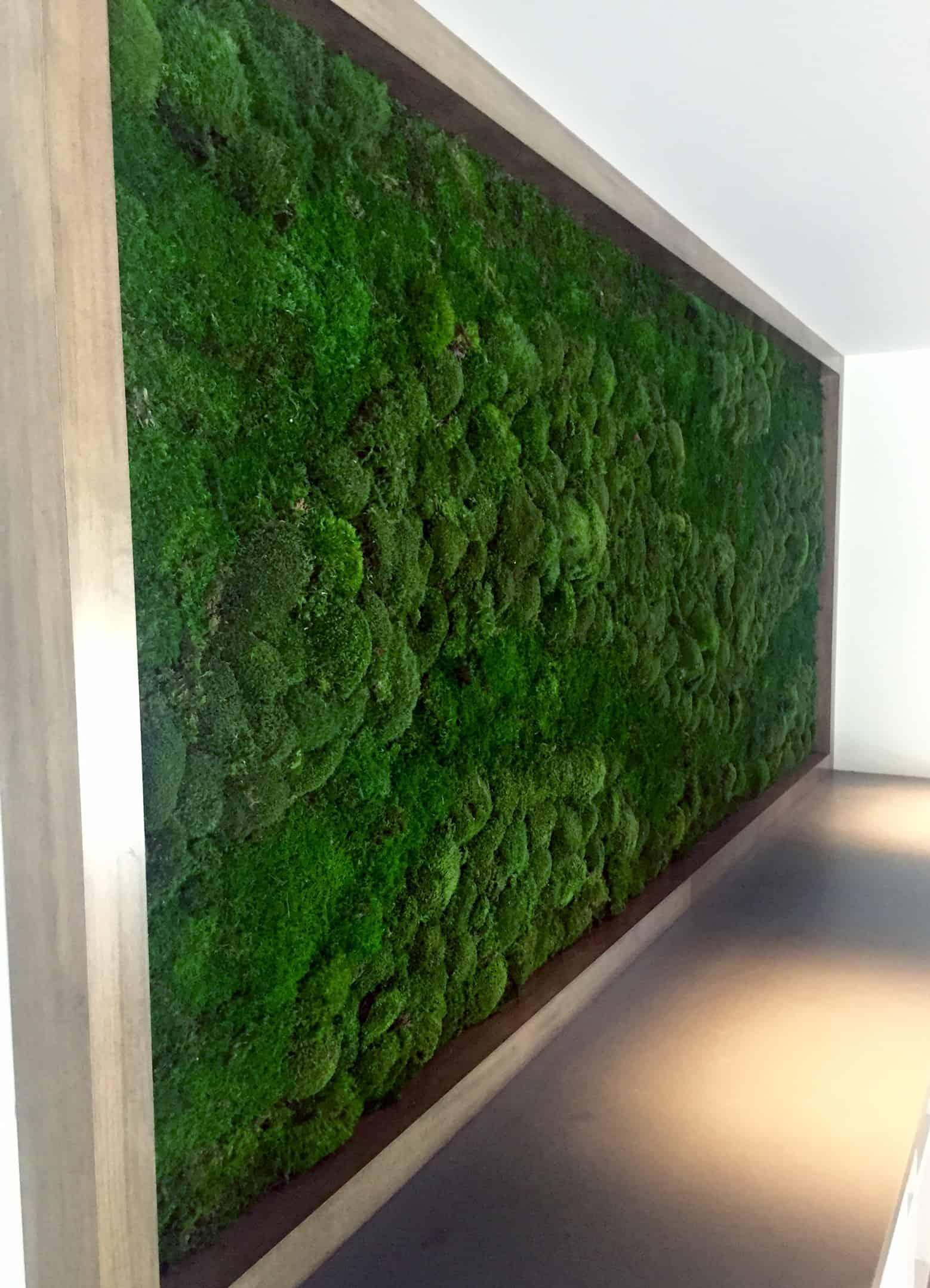 make moss walls plantscapers. Black Bedroom Furniture Sets. Home Design Ideas