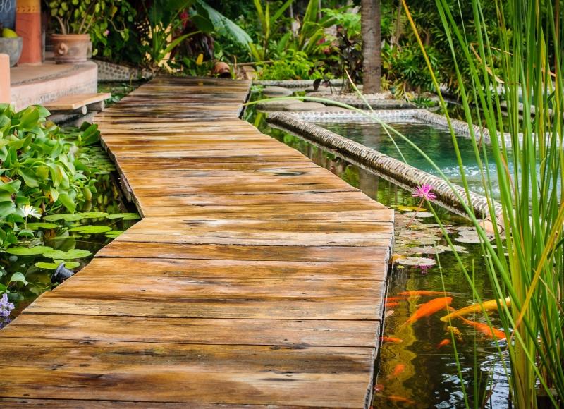 koi pond shutterstock_120033349