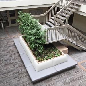 Medical Building Lobby-Remodel