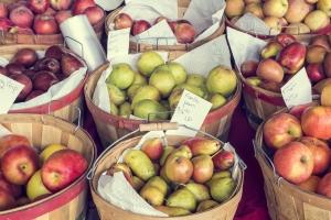 fall-harvest-apples-pears