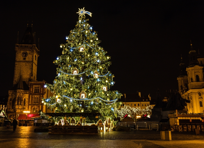 christmas-tree-european